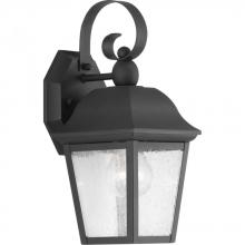 Progress P560010-031 - P560010-031 1-100W MED WALL LANTERN